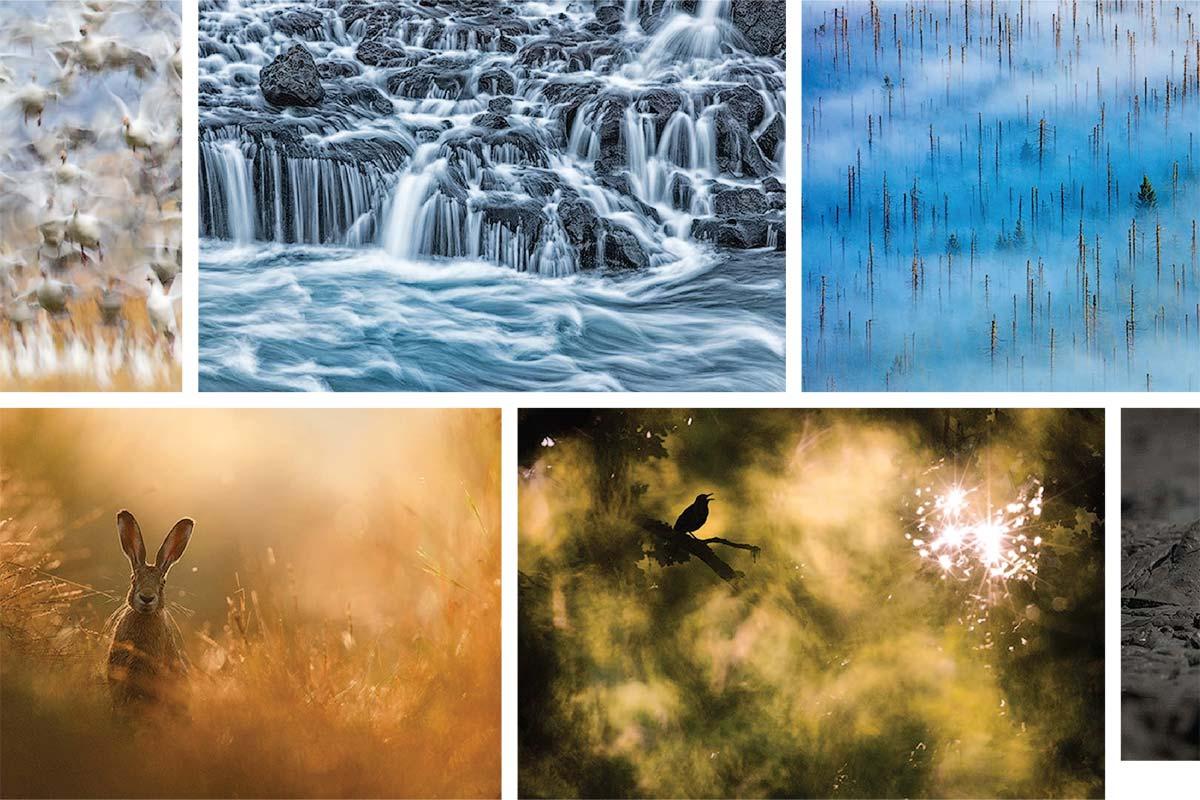 NaturePhotog_Copertina